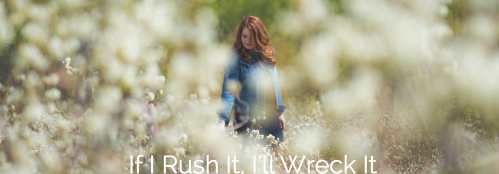 If I Rush It I'll Wreck It
